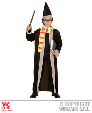 Boys Kids Childs Harry Wizard Fancy Dress Costume Book Week Outfit 5-13 Yrs