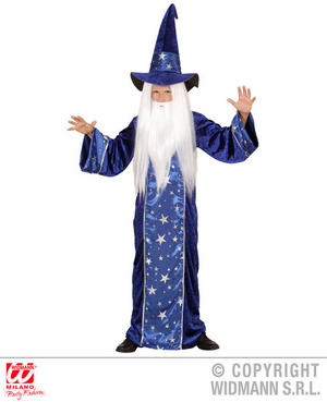 Boys Kids Childs Great Wizard Fancy Dress Costume Book Week Outfit 4-13 Yrs