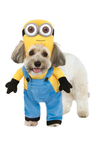 Minion Bob With Arms Despicable Me Fancy Dress Costume Outfit Dog Pet Xs To XL