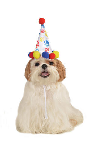 Paw Print Birthday Boy Party Hat Fancy Dress Costume Outfit Dog Pet Animal S - L