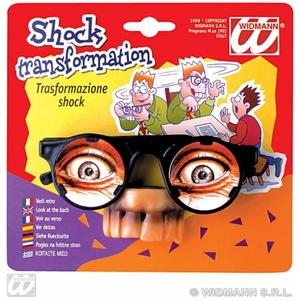 Disguise Glasses Joke Spy Novelty Fancy Dress Accessory