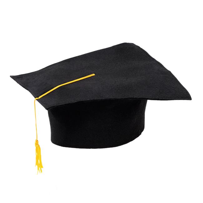 Adult Black Graduation Hat Cap Novelty Mortar Board Fancy Dress Costume Prop