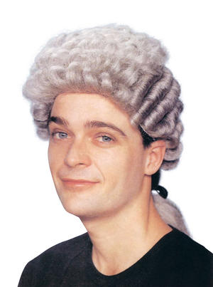 Adult Grey Barrister Wig Court Judge Lawyer Fancy Dress Accessory