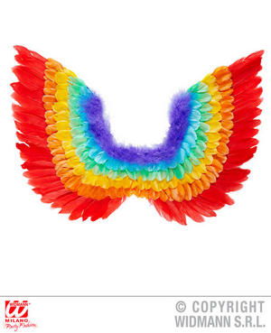 Rainbow Feather Wings Fairy Gay Pride Carnival Fancy Dress Accessoy