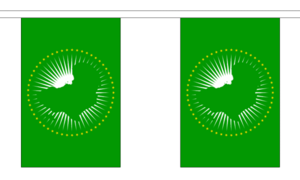 "African Union Bunting 3m Metre Length With 10 Flags 9""x6"" 100% Woven Polyester"
