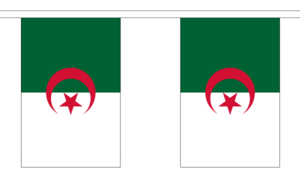 "Algeria Bunting 3m Metre Length With 10 Flags 9""x6"" 100% Woven Polyester"