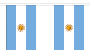 "Argentina Bunting 9M Metre Length With 30 Flags 9""X6"" 100% Woven Polyester"