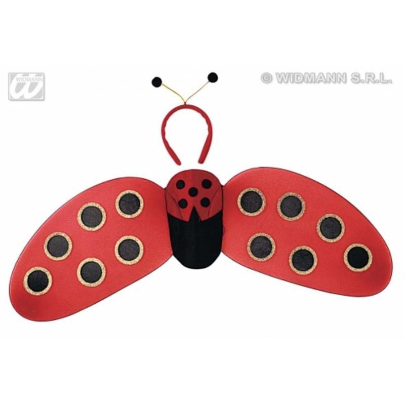 Ladybug Ladybird Fancy Dress Set Kit Wings & Antenna