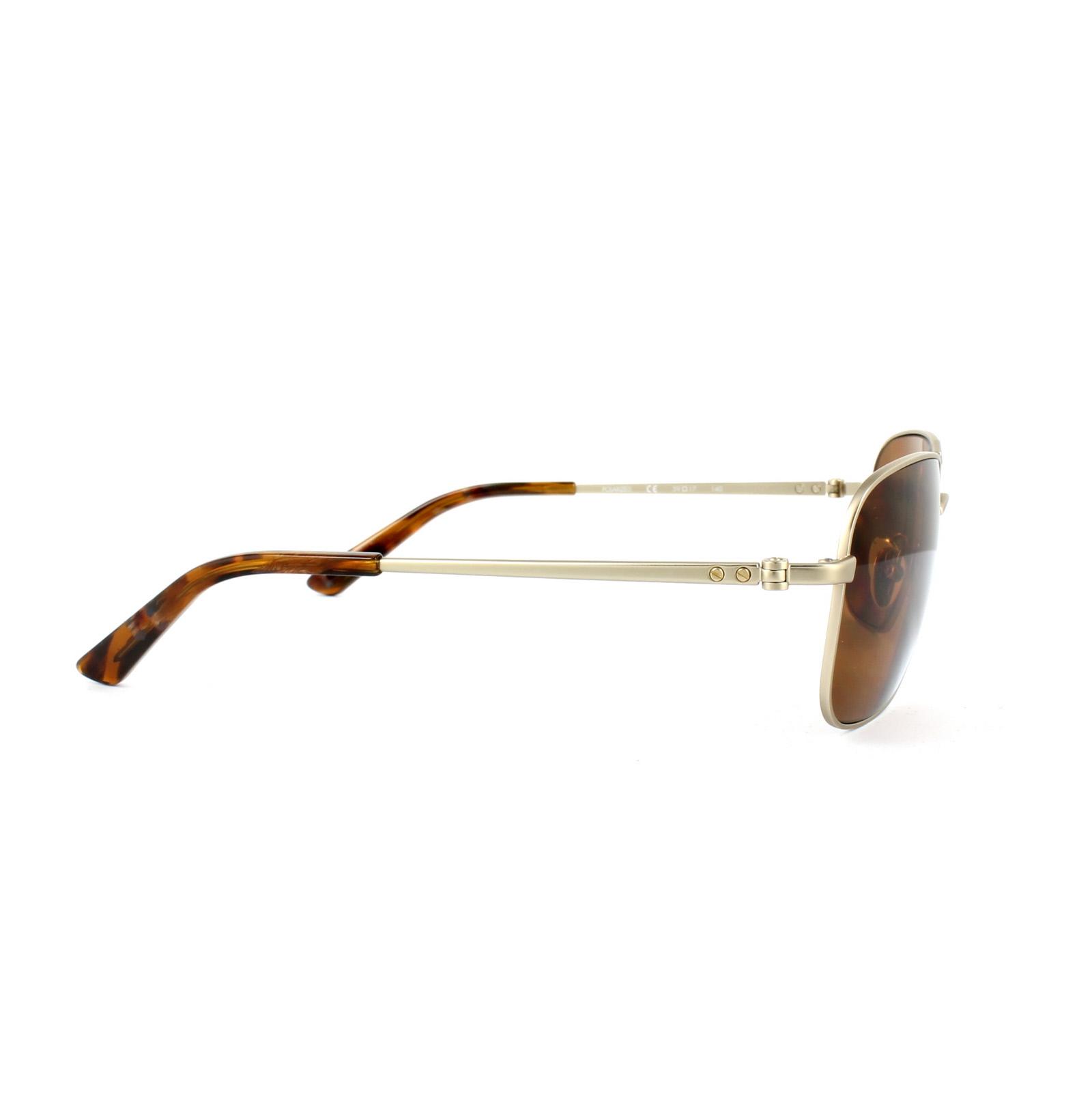 2370fa8faf4 Sentinel Calvin Klein Sunglasses CK7497SP 700 Japanese Gold Brown Polarized