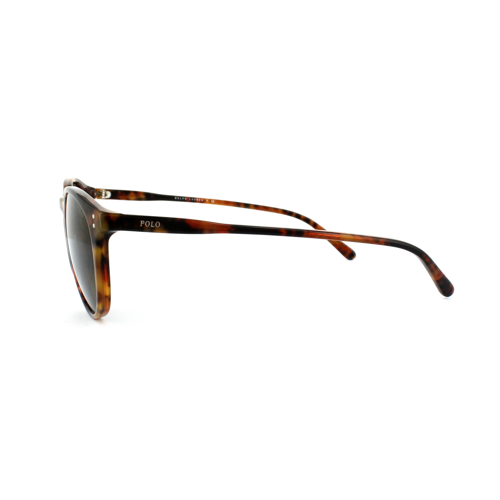470bd997b99 Polo Ralph Lauren Sunglasses 4110 501773 Havana Brown 8053672557848 ...