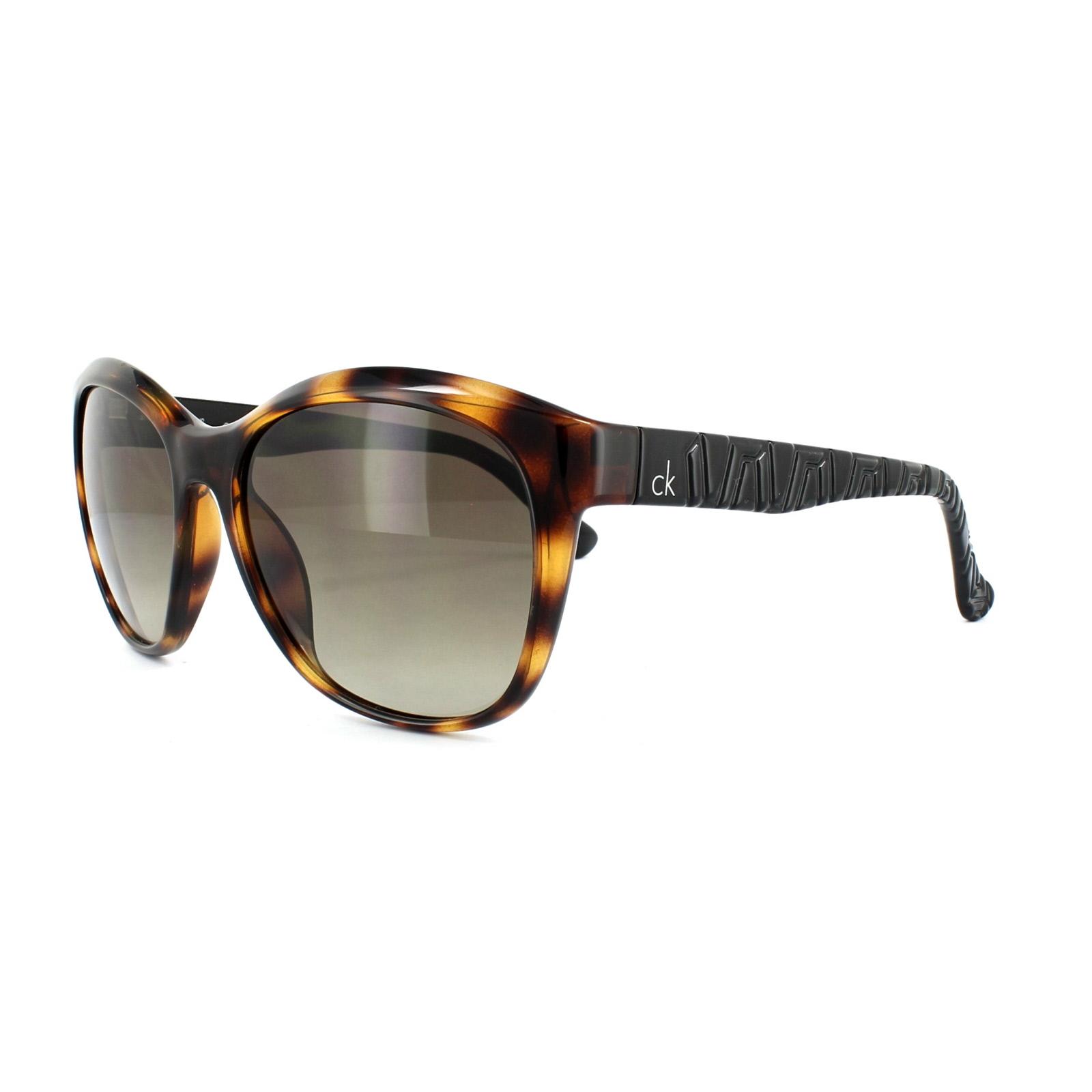 c636bf2edf6 Sentinel Calvin Klein Sunglasses 3168 320 Havana Black Brown Gradient