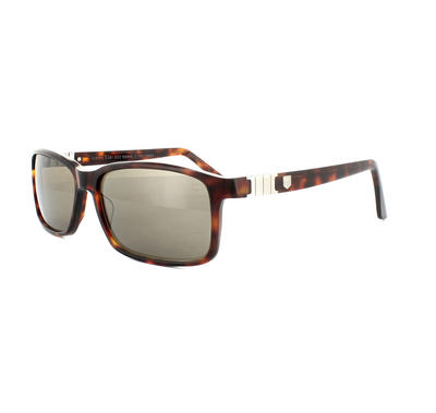 Tag Heuer Legend Acetate 9381 Sunglasses