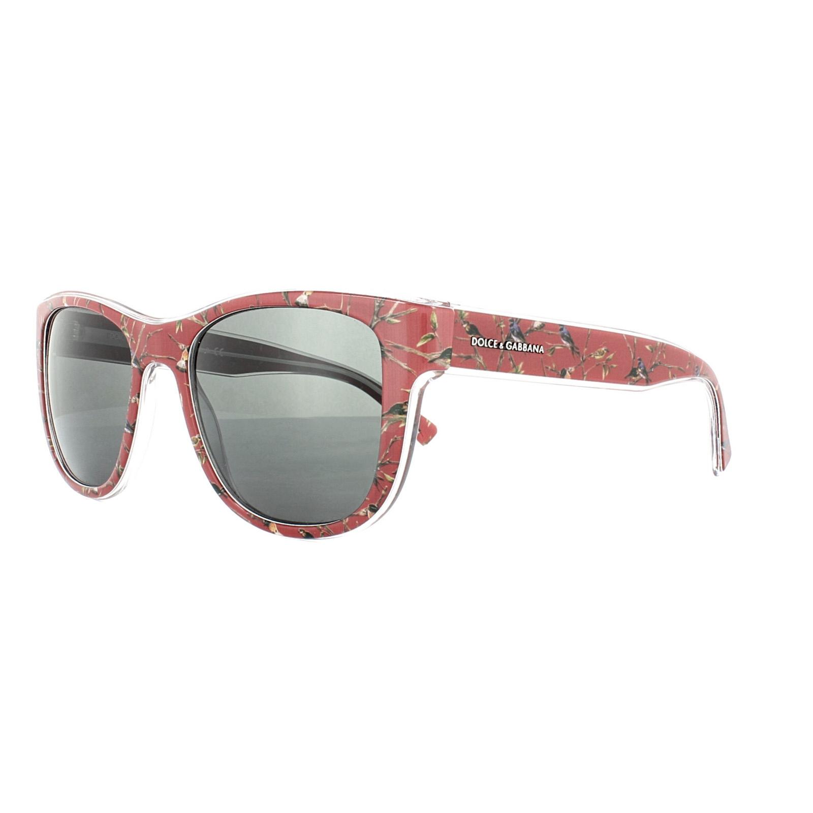 DOLCE & Gabbana Gafas de sol 4284 3054/87 ROJO Pájaros Gris | eBay