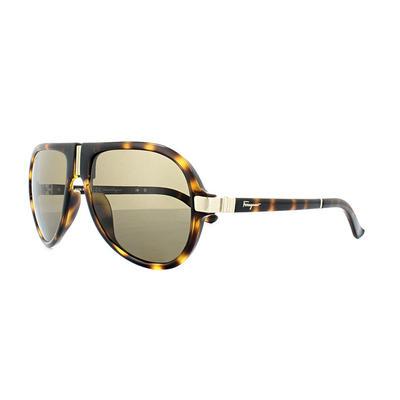 Salvatore Ferragamo SF662SP Folding Sunglasses