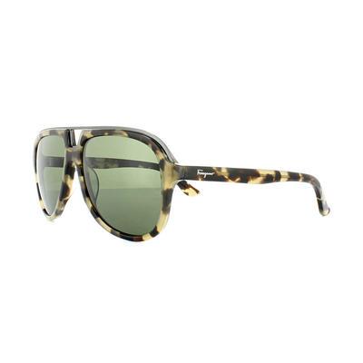 Salvatore Ferragamo SF730S Sunglasses