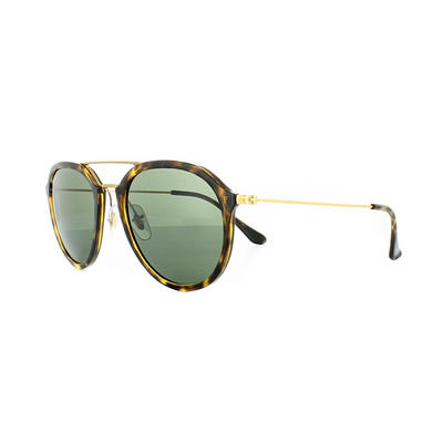 Ray-Ban 4253 Sunglasses