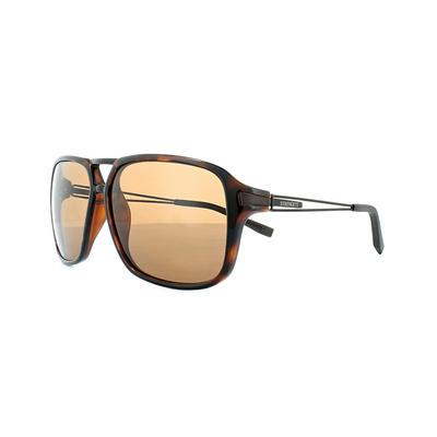 Serengeti Venezia Sunglasses