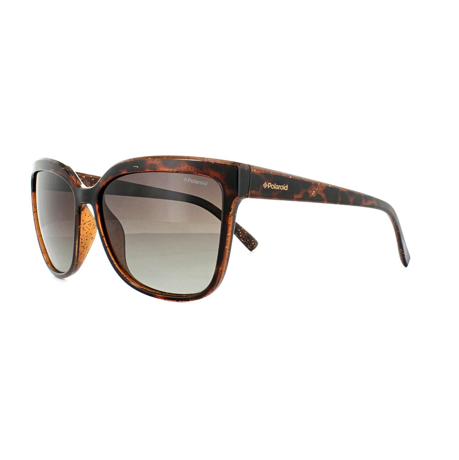 e0fbc69153 Sentinel Polaroid Sunglasses 4029 S Q3V LA Dark Havana Brown Gradient  Polarized