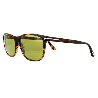 Tom Ford 0629 Nicolo Sunglasses