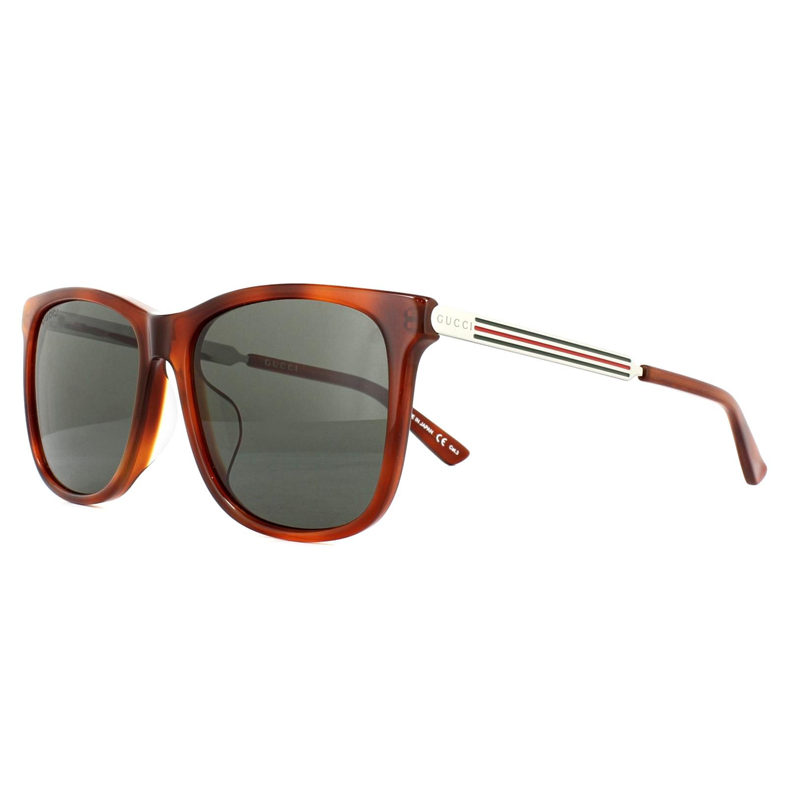 12ac71f6567 Gucci Sunglasses GG0078SK 005 Tortoise Green 889652051956