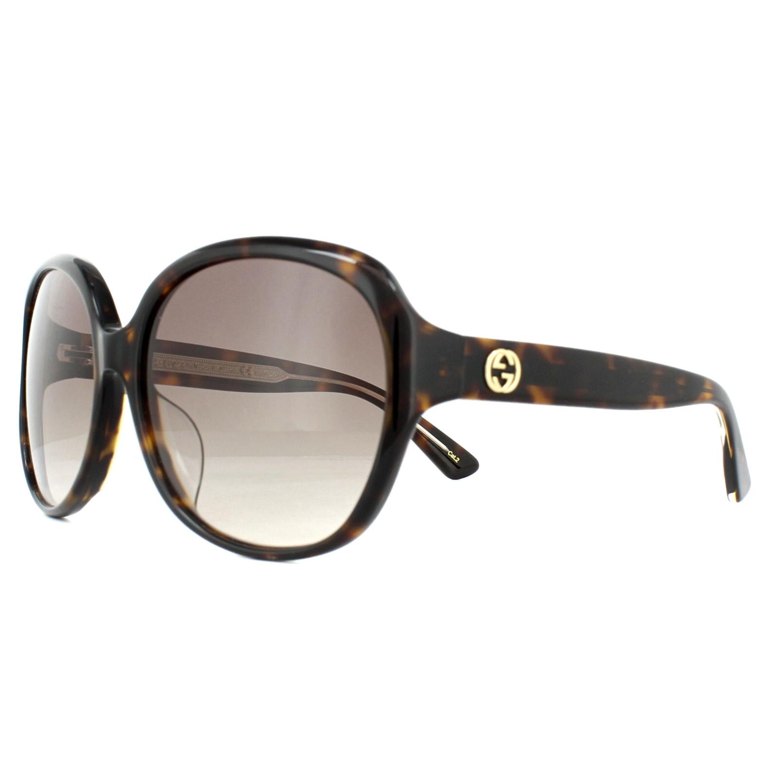 6752d9b80cc0 Gucci Sunglasses GG0080SK 003 Tortoise Brown Gradient 889652052038 ...