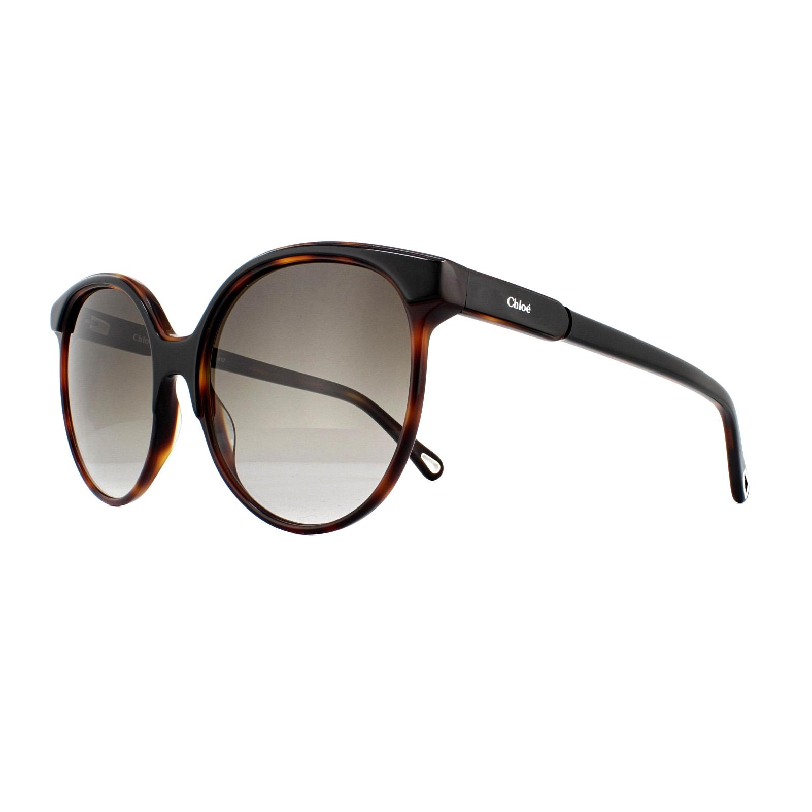 38e8a36d3a7 Cheap Chloe CE733S Sunglasses - Discounted Sunglasses