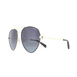 Polaroid PLD 6055/S Sunglasses