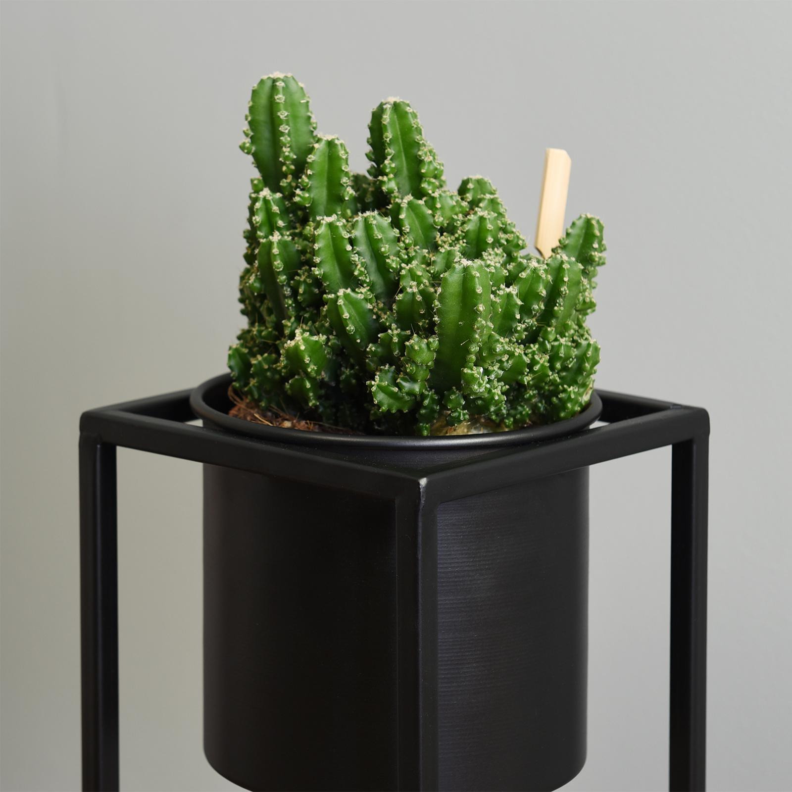 Hartleys-Small-Round-Freestanding-Black-Metal-Plant-Pot-Tall-Square-Floor-Stand thumbnail 11