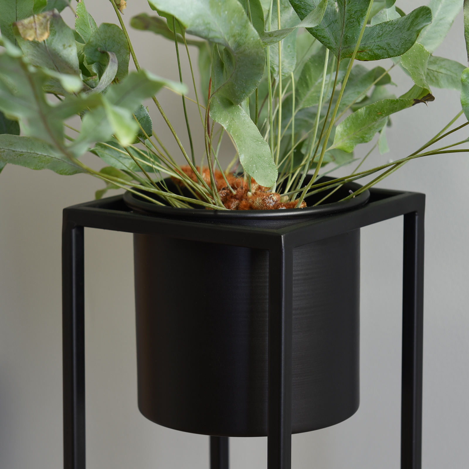 Hartleys-Small-Round-Freestanding-Black-Metal-Plant-Pot-Tall-Square-Floor-Stand thumbnail 18