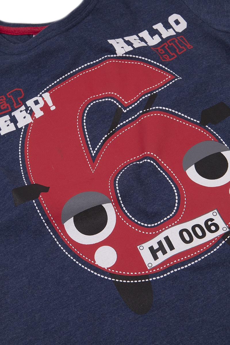 Birthday Boy T Shirts For Toddlers