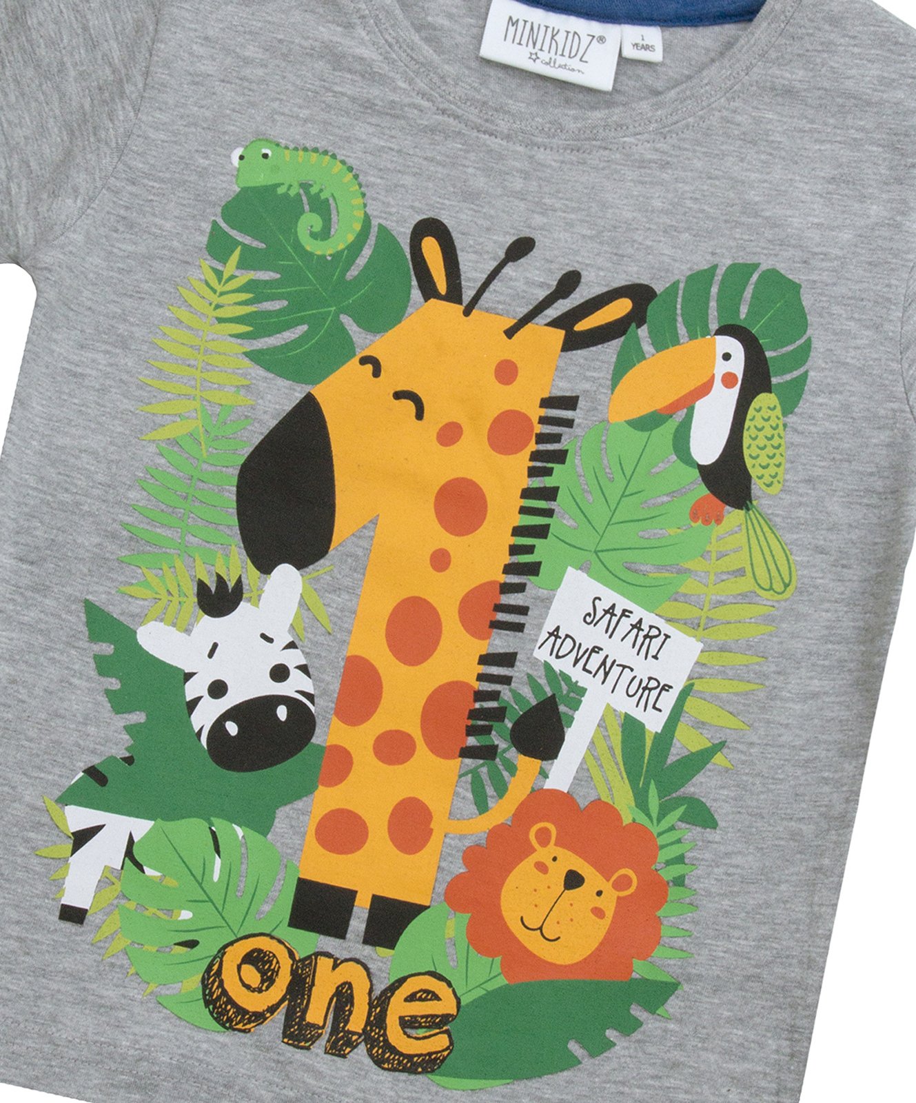 Boys Birthday Number T-Shirt Age 1 2 3 4 5 6 Party Outfit Top Age