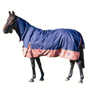 Heavyweight Turnout Rug Combo Navy Chnt