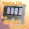 View Item Natural Sunrise Alarm Clock