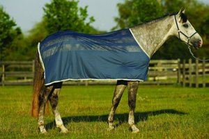 Amigo Skrim Cooler Sweat Rug Navy 4 9 Horse Rugs