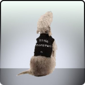 K9 Clothing T-Shirts for dogs LITTLE MONSTER Preview