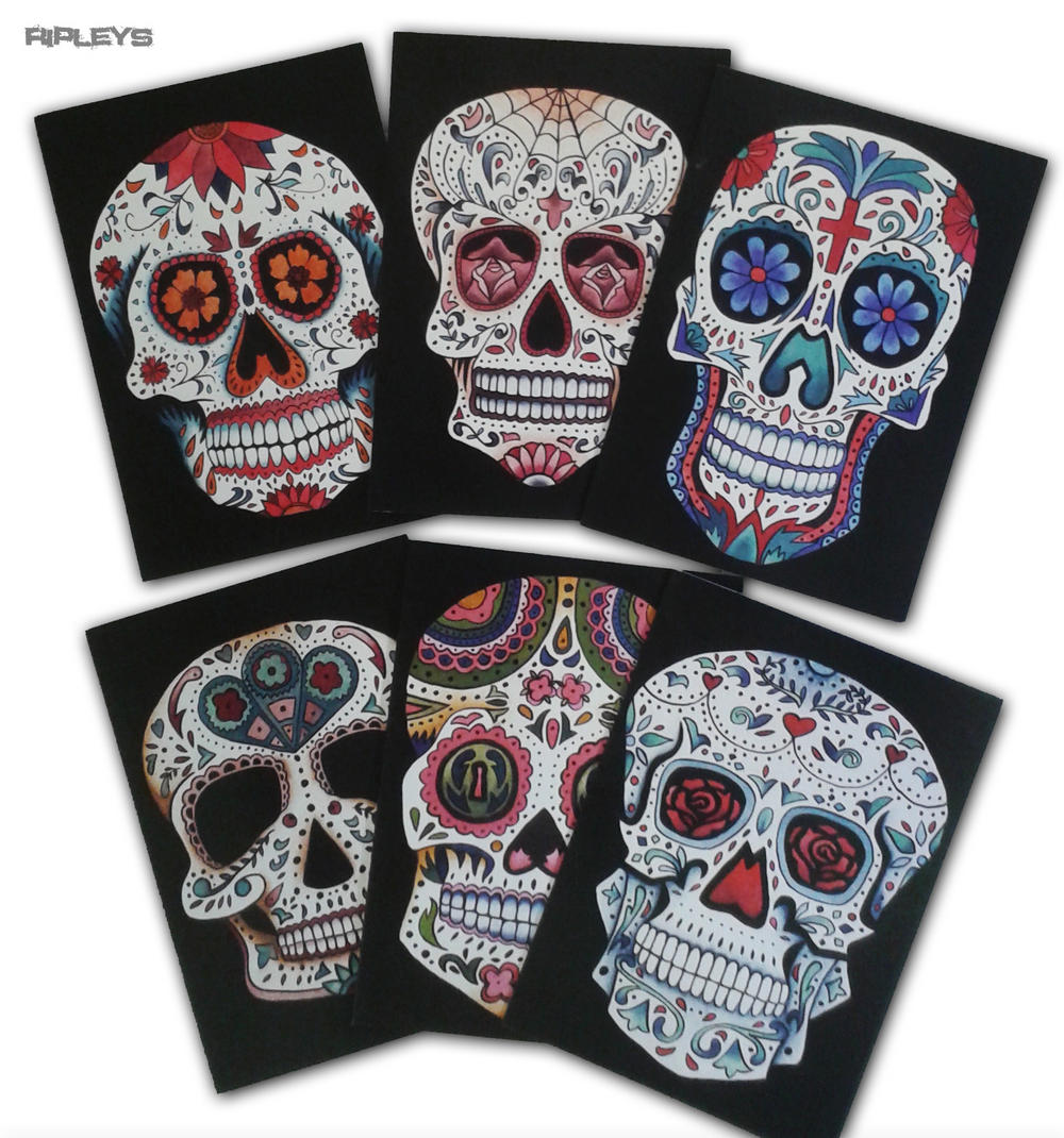 Set of 6 luxury greeting cards sugar skull day of the dead muerte m4hsunfo