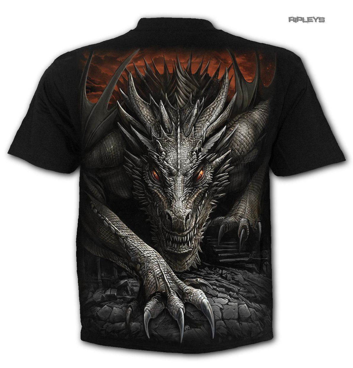 SPIRAL-Direct-Unisex-T-Shirt-Biker-Goth-MAJESTIC-DRACO-Dragon-All-Sizes thumbnail 8