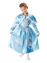 Disney Cinderella Winter Wonderland Costume