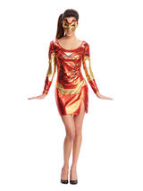 Ladies Miss Iron Man Costume