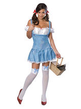 Wizard of Oz Dorothy Secret Wishes Ladies Costume