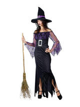 Ladies Mystical Witch Costume