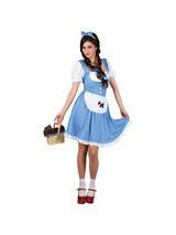 Ladies Wizard Of Oz Dorothy Costume