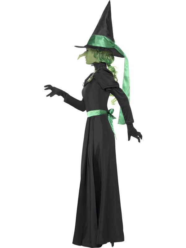 Adult Ladies Wicked Witch of the West Costume   Princess ...