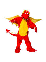 Child's Fire Breathing Dragon Costume