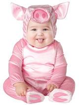 Infant's Lil' Piggy Costume