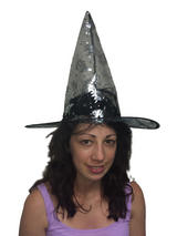 Adult Ladies Silver Witch Hat