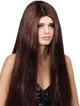Adult Classic Long Brown Wig