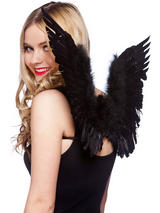 Black Feather Wings (Small)
