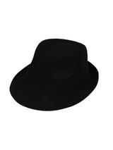Plain Fedora Hat