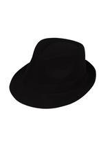 Plain Fedora Hat